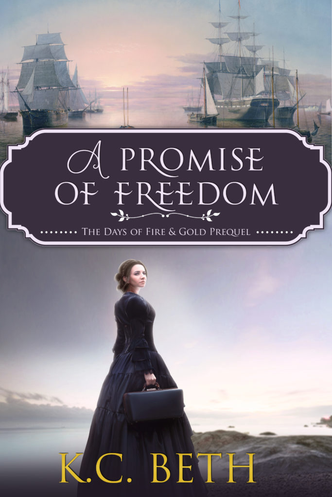 A Promise of Freedom book cover